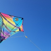 National Kite Flying Day